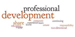 prfessional development1